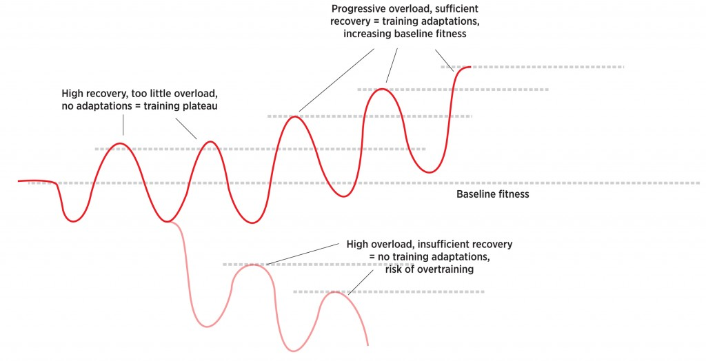 recovery-graph-1